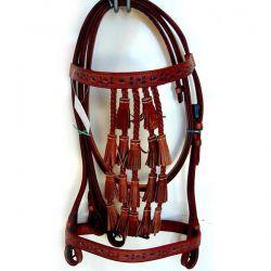 Spanish Bridle